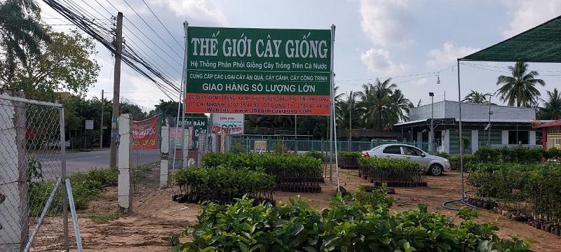 Thế Giới Cây Giống Chi Nhánh Châu Phú - An Giang